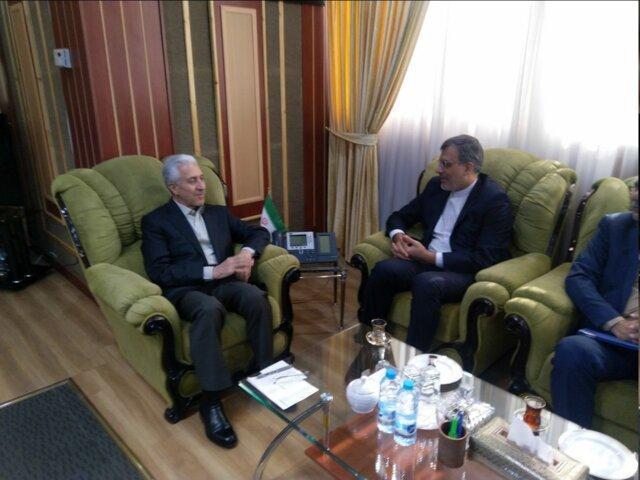رایزنی معاون ظریف درباره فعال سازی کارگروه علمی و آموزشی شورای عالی ایرانیان