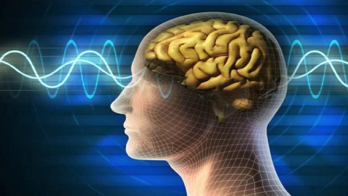 تسکین التهاب مغز راهی برای غلبه بر آلزایمر