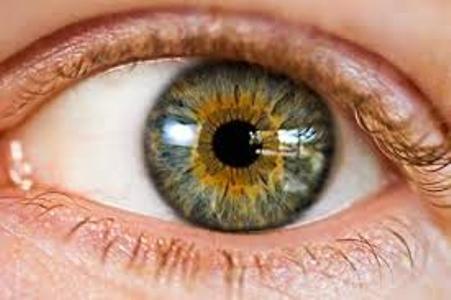 سهم 80 درصدی اپتومتریست ها در آنالیز مسائل بینایی