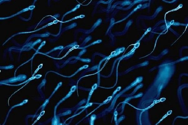 ارتباط نشانگرهای موجود در اسپرم پدر با ابتلای نوزاد به اوتیسم
